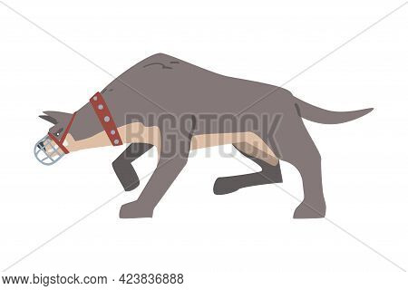 Aggressive Muzzled Dog In Leather Collar Standing In Fighting Pose Vector Illustration