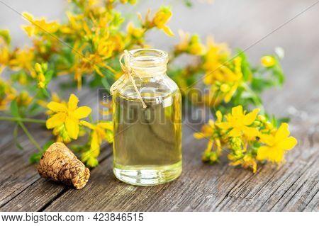 Glass Bottle Of St. John\'s Wort Essential Oil With Flowers, Alternative Medicine
