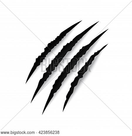 Tiger Claw Mark Scratches Vector Slash Traces Of Wild Cat Animal Paw And Talons. Scary Horror Monste