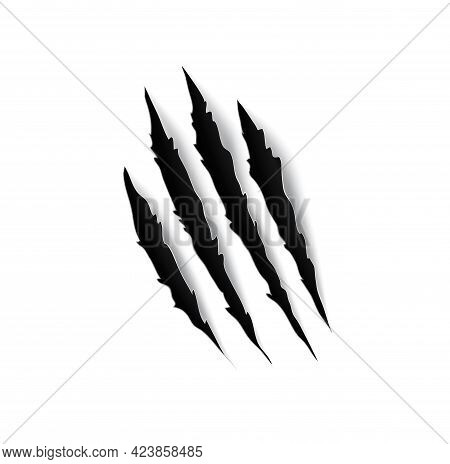 Tiger Claw Mark Scratches, Slash Torn Traces Or Trails Vector Design. Scratch Marks Of Wild Cat Anim