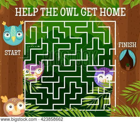 Kids Labyrinth Maze Riddle With Cartoon Vector Owls And Funny Owlets. Square Maze Game Or Puzzle, He