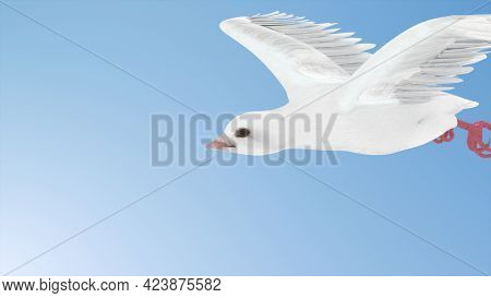 White Dove Flying In The Sky. 3d Render Side View Of Pigeon Flying On Blue Background, Isolated With