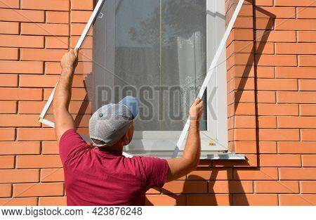 A Man Is Installing A Mosquito, Insect Window Screen, Net On A House Window To Prevent Mosquitoes An