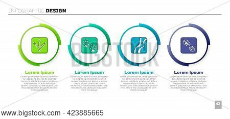 Set Chicken Paw Footprint, Fox, Snake And Human Footprints Shoes. Business Infographic Template. Vec