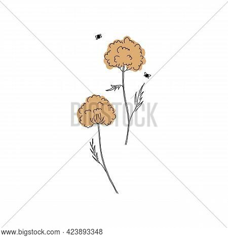 Wildflowers, Garden Flowers. Vector Simple Graphics, Hand Drawn Floral Icons.