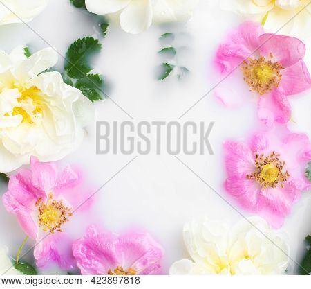 Bush Rose In Milk . Flowers In Milk . Spa Treatments. Romantic. Romantic Setting. Fresh Flowers. Cop