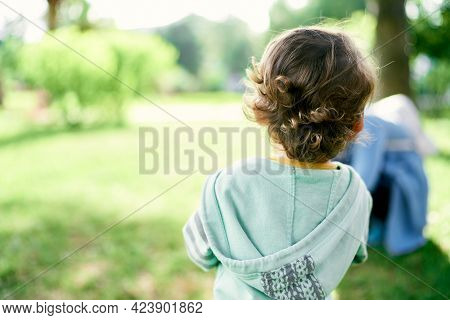 Curly-haired Child In A Sweater With A Hood Stands On A Green Lawn. Back View