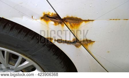 Sheet Metal Corrosion Over Wheel Of Old White Car. Rusty Messy Surface With Drops Of Water. Damaged