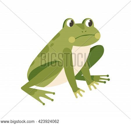Sad Frog Sitting With Unhappy Face. Funny Thoughtful Froglet. Upset Green Toad. Childish Colored Fla