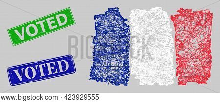 Carcass Net France Flag Model, And Voted Blue And Green Rectangle Scratched Stamps. Carcass Net Mesh
