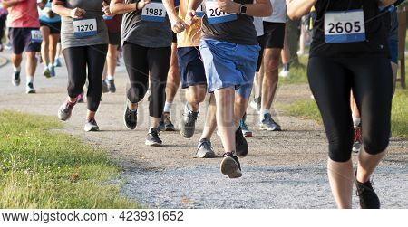 A Line Of Runners Legs In Shorts And Spandex Running A 5k On A Dirt Path In A Crowded Race.