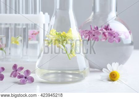 Laboratory Glassware With Flowers On White Wooden Table, Closeup. Extracting Essential Oil For Perfu