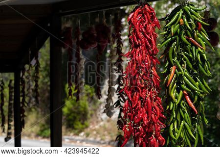 different kinds of hanging chili peppers, Apulia, Italy