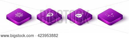 Set Isometric Bacteria, Location Service, Bioengineering And Route Location Icon. Vector