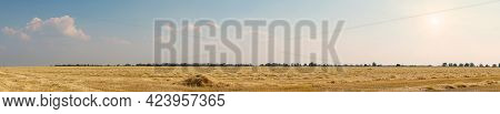 Panorama Beautiful Dry Stubble On The Field Against The Sky