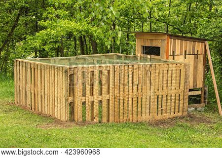 Henhouse Built Of Wooden Pallets. A Small Chicken Coop By The Forest. Hen Breeding. Small Farm.