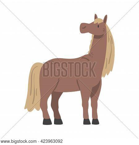 Cute Horse Farm Animal, Livestock Cartoon Vector Illustration
