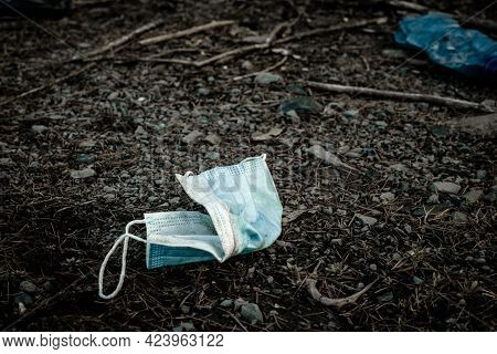 Environmental Pollution. Waste Rubbish In Forest. Plastic Garbage Trash In Woodland. Ecological Prob