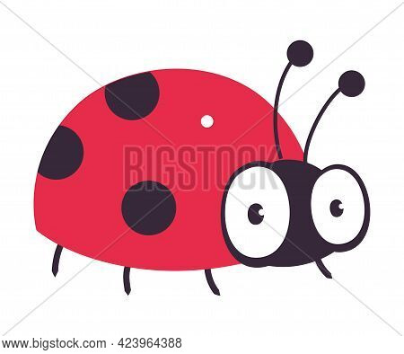 Cute Ladybug Funny Insect, Lovely Colorful Creature Cartoon Vector Illustration