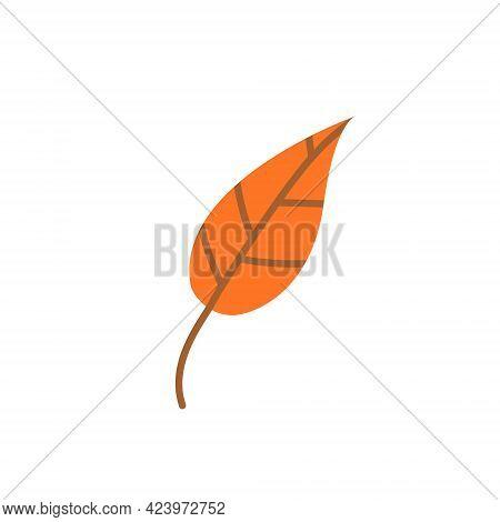 Orange Fallen Autumn Leaf Isolated On A White Background. Vector Illustration. Design Element For Au