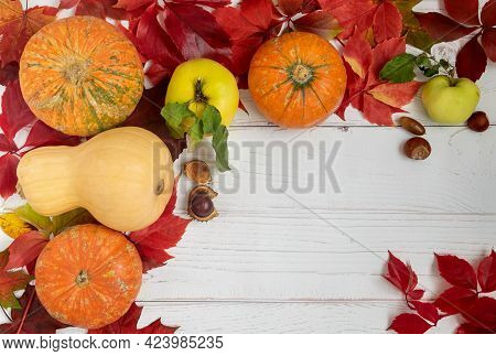 Food Background Of Bright Beautiful Autumn Leaves, Small Ripe Pumpkins And Apples. Autumn Season, Se
