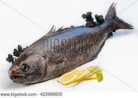 Close Up Of Fresh Black Rudder-fish With Lemon Slices Isolated On White Background.