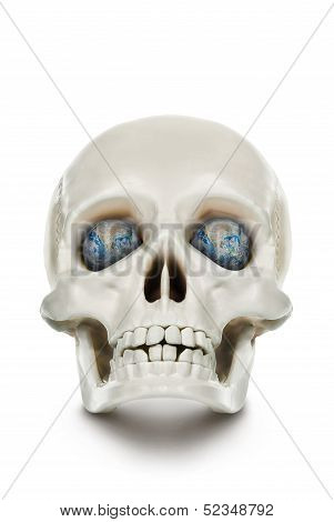 The human skull isolated on white background. poster