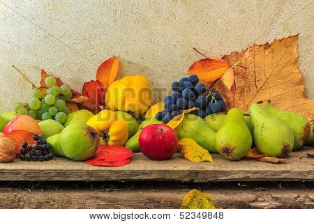 Autumnal Still Life With Fruit And Leaves On A Wooden Base