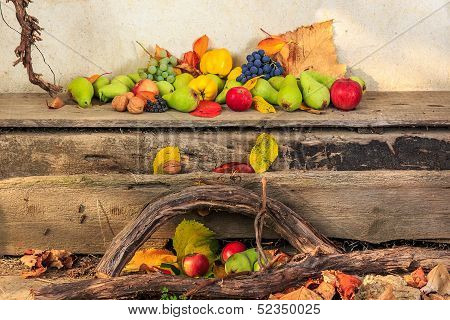 Autumn Still Life With Fruit In Leaves On Board And Vines Background