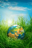 Globe lies on green grass. Concept - Earth Day. poster