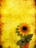 artificial sunflower in the pot on grange yellow background poster