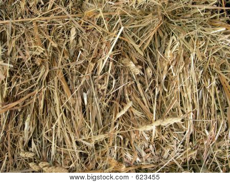 Close-up Of Hay Bale