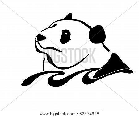 Panda swimming
