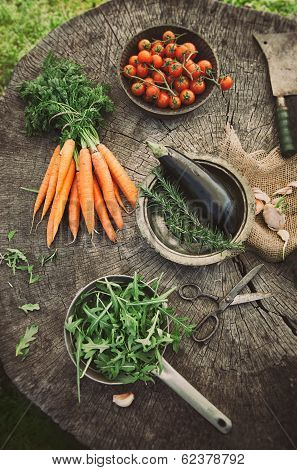 Vegetables From Garden