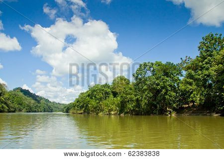 tropical rain forest river with blue skyes
