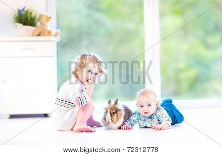 Cute little baby and his adorable toddler sister playing with a real bunny in a sunny living room with a big garden view window sitting on the floor poster