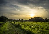 A green road, wonderful fields and an amazing sunset. poster