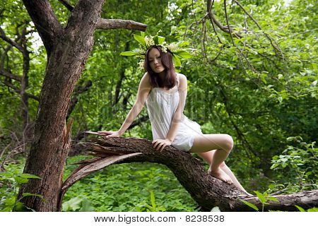 Asian Girl In White Over Forest