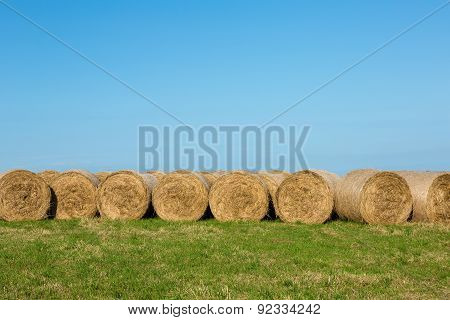 Hay Bales in Afternoon Sunshine against Horizon Landscape