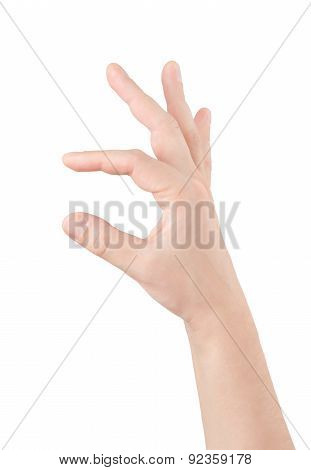 Empty Man Hand On White Background