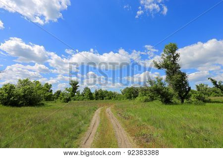 landscape with rural road across meadow in steppe