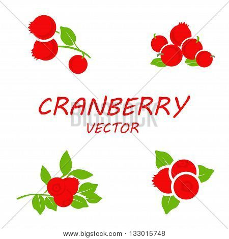 Vector flat cranberry icons set on white background