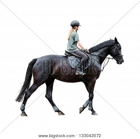 woman riding on a horse isolated white background