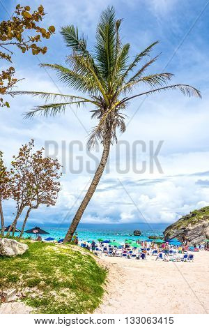 HORSESHOE BAY BERMUDA - MAY 26 - Palm trees and rock formations welcome the tourists to Horseshoe Bay on May 26 2016 in Bermuda.
