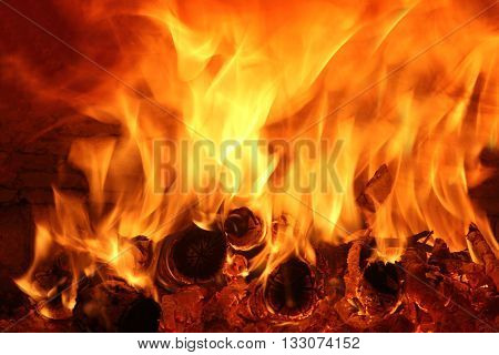 wood burning and flames in the wood oven poster