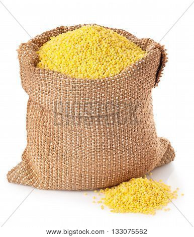 Millet in burlap sack with heap isolated on white background. Groat millet in burlap sack