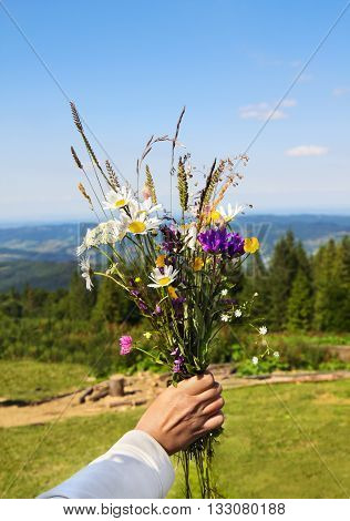 Summer bouquet of wild flower in woman's hand on mountains background