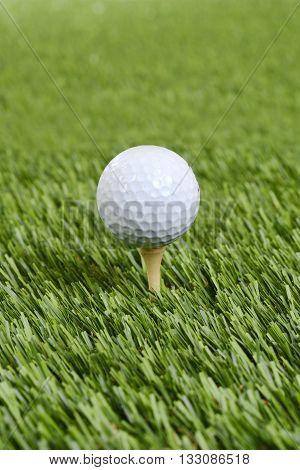 closeup golf ball on wood tee on artificial grass