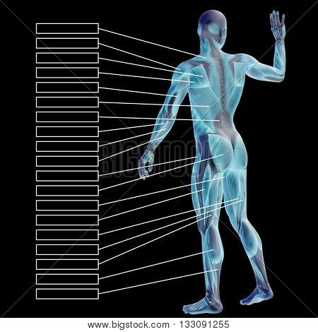 3D illustration of a concept or conceptual human man anatomy and muscle for sport and textbox on blue background