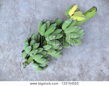 green bananasbranch of raw bananas on cement background
